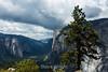 El Capitan and Cathedral Rocks - Yosemite #8648