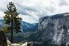 El Capitan - Yosemite #8663