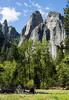 Cathedral Rocks - Yosemite #9079