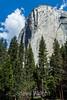 El Capitan - Yosemite #9304