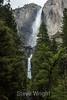Yosemite Falls - Yosemite #8288