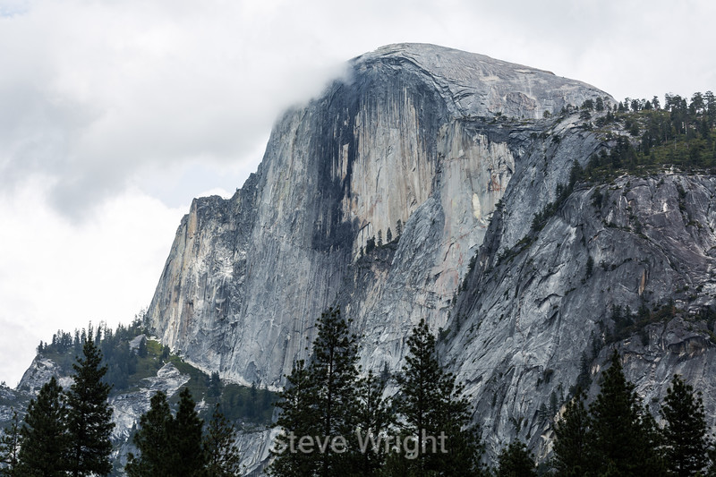 Half Dome - Yosemite #8231