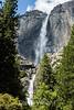 Yosemite Falls - Yosemite #9422