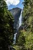 Yosemite Falls - Yosemite #9437