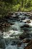 Merced River - Yosemite #8934