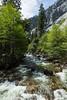Merced River - Yosemite #8905