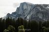 Half Dome - Yosemite #8809