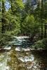 Merced River - Yosemite #8912