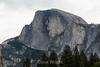 Half Dome - Yosemite #9009