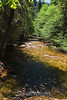 Merced River - Yosemite (26)