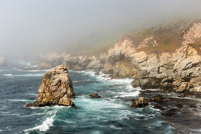 Garrapata in the Fog