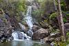 """Salmon Creek Falls"""