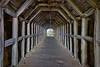 """""""Partington Cove Tunnel"""""""
