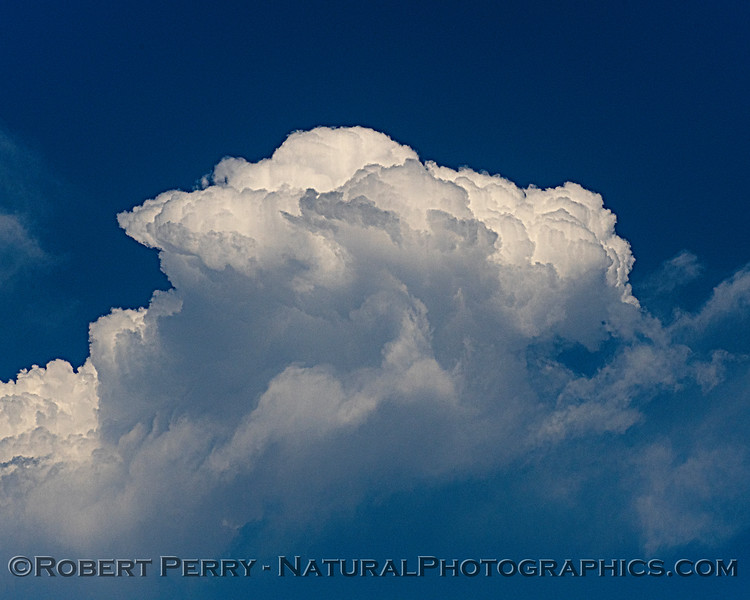clouds cumulus 2020 06-25 EDH-hawknest--001