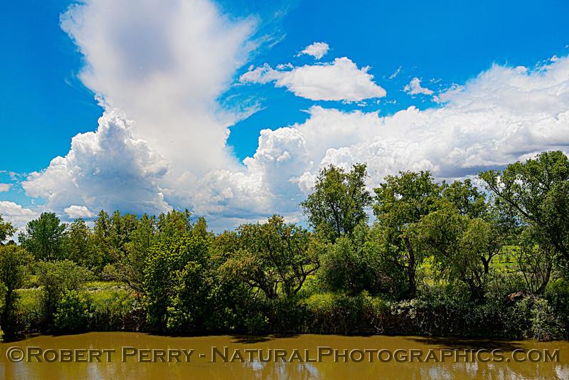 clouds storm treeline Colusa Basin Drainage Canal 2020 05-18 Colusa Cnty-b-231