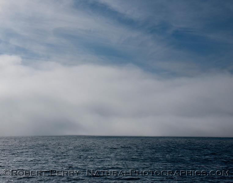 fog 2013 03-02 SB Channel-a-010