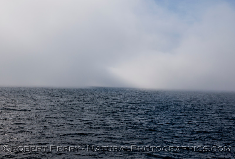 fog 2013 03-02 SB Channel-a-041