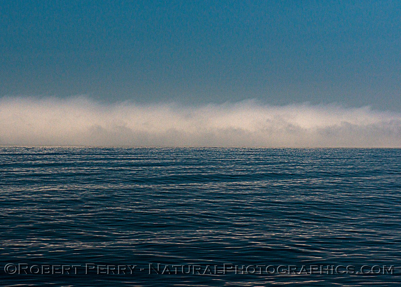 Fog 2020 06-11 SB Channel-e-015
