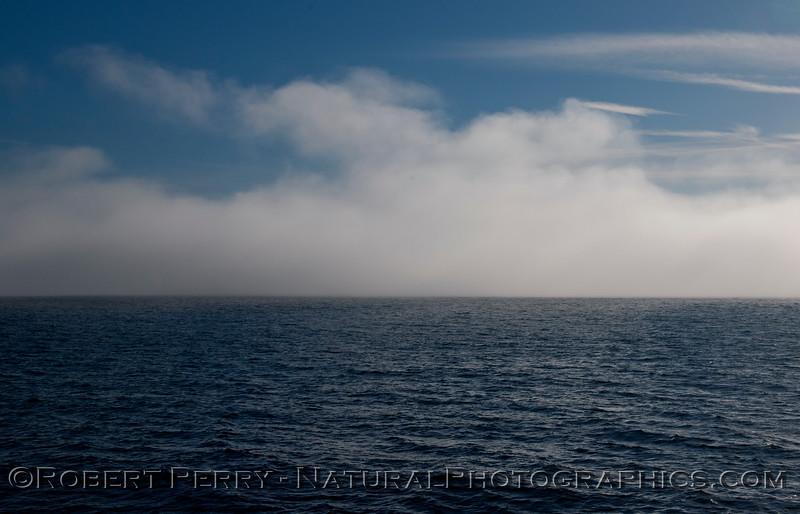 fog 2013 03-02 SB Channel-a-004