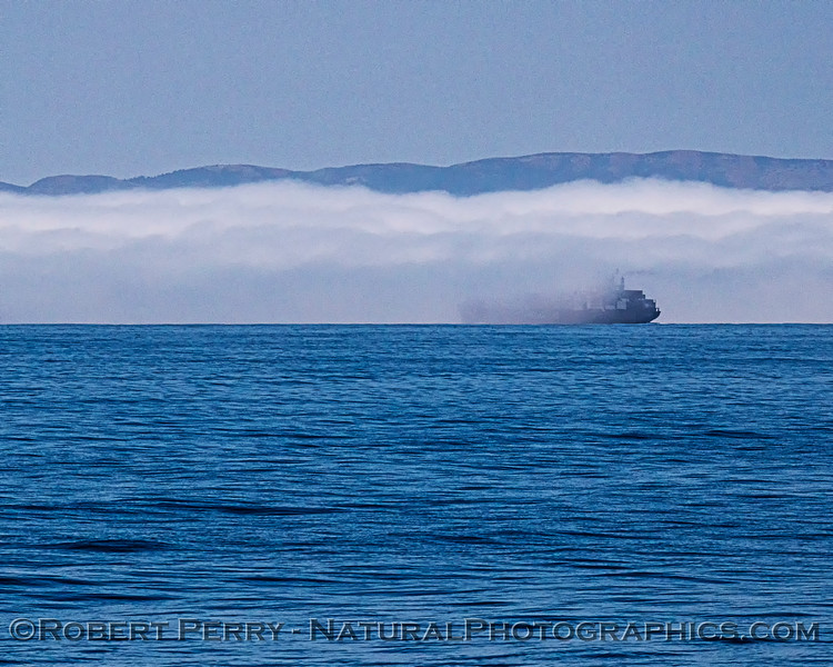fog & container vessel Pasha Hawaii 2020 06-11 SB Channel-b-031