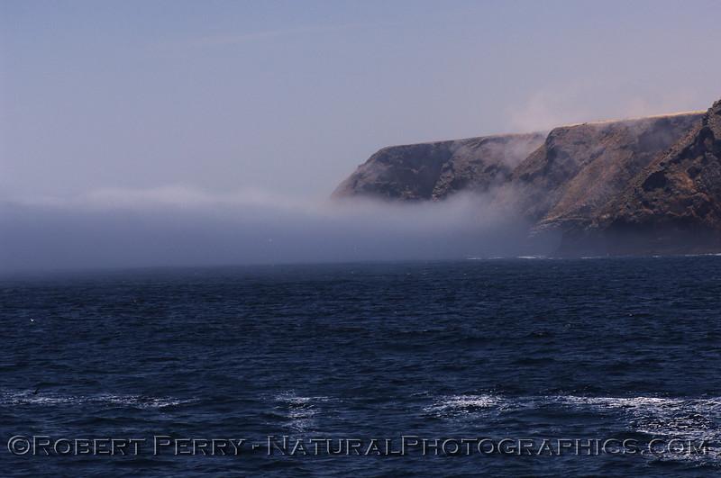 fog bank approaches island 2008 06-08 sta cruz island--322