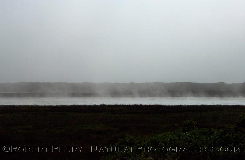 Fog 2013 03-12 Mugu Estuary-057