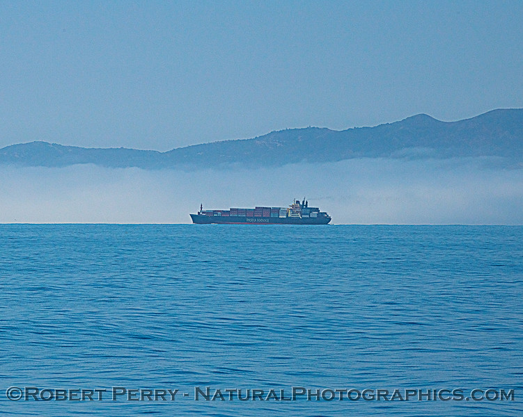fog & container vessel Pasha Hawaii 2020 06-11 SB Channel-b-009