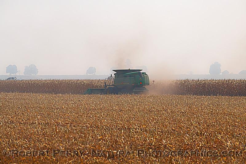 farm equipment corn harvesting 2020 10-03 Staten Island-001