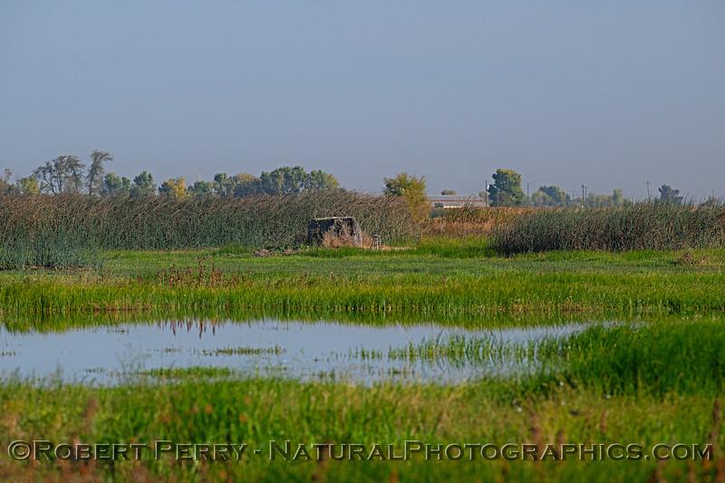 wetland scenery photographers blind 2018 10-31 Merced NWR-b-002