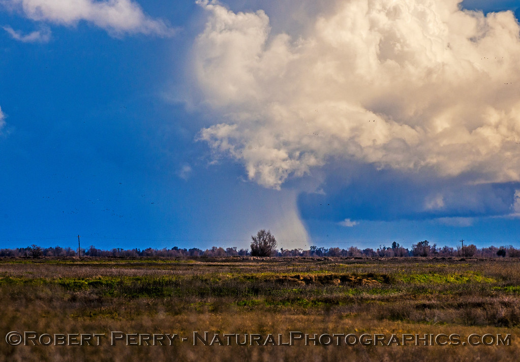 rain squalls and clouds in distance 2017 01-23 Sacramento NWR-014