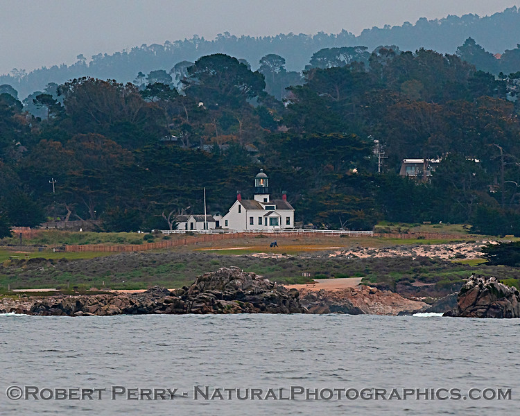 Point Pinos Lighthouse 2018 04-26 Monterey--0003