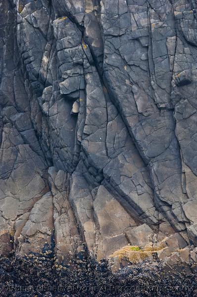 vertical rock strata & rocky intertidal zonation 2006 08-18 Sta Cruz Island--006