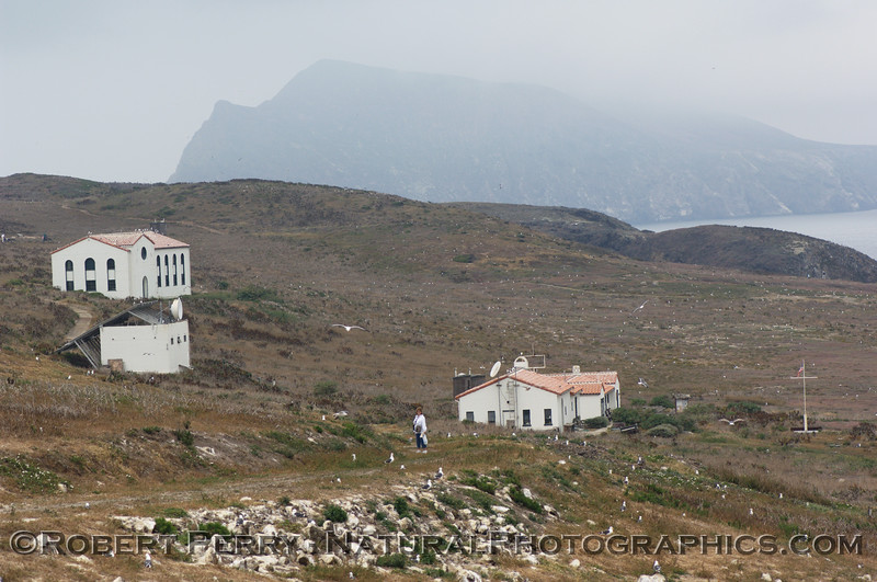 East Anacapa Island - view of buildings as seen from Anacapa Light, looking west.