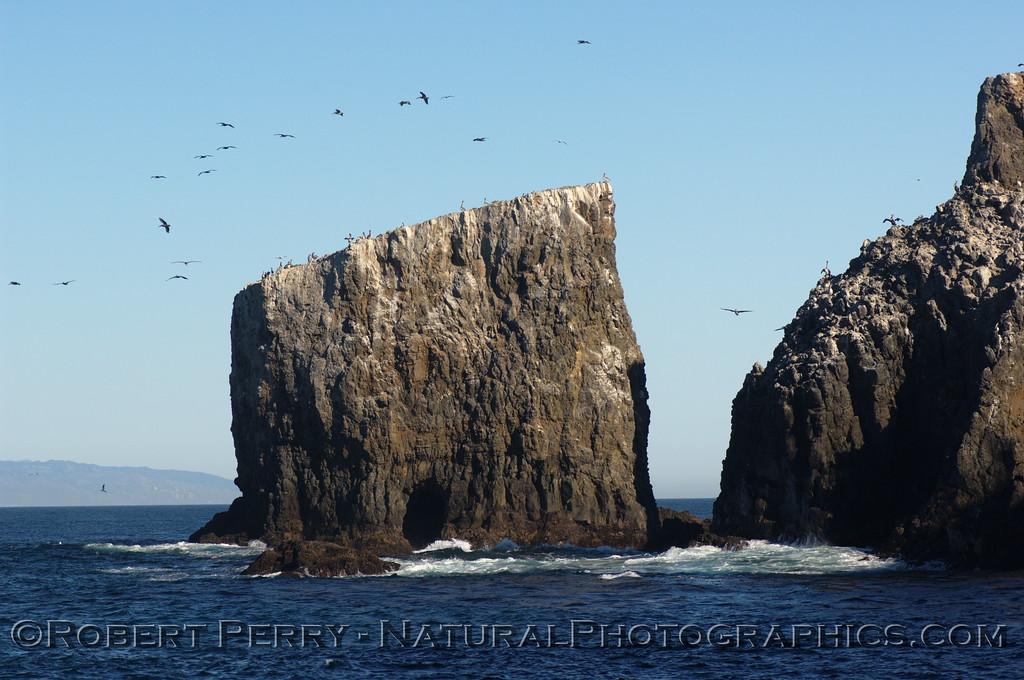 Arch Rock, Anacapa Island.