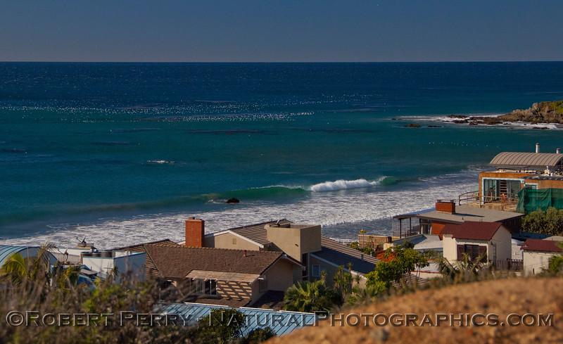 <em>Larus</em> masses on the water off Victoria Point, Broad Beach, Malibu.