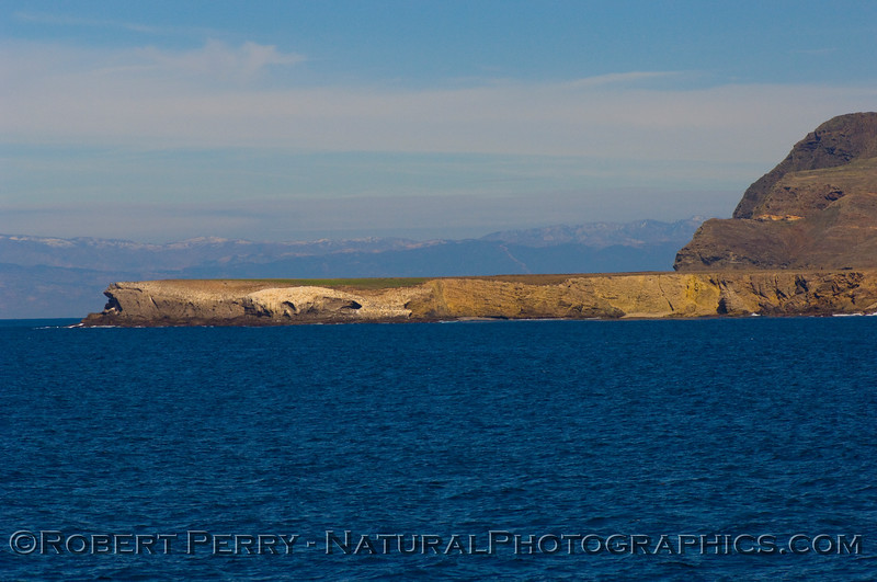 Frazier Point, Santa Cruz Island, looking north.