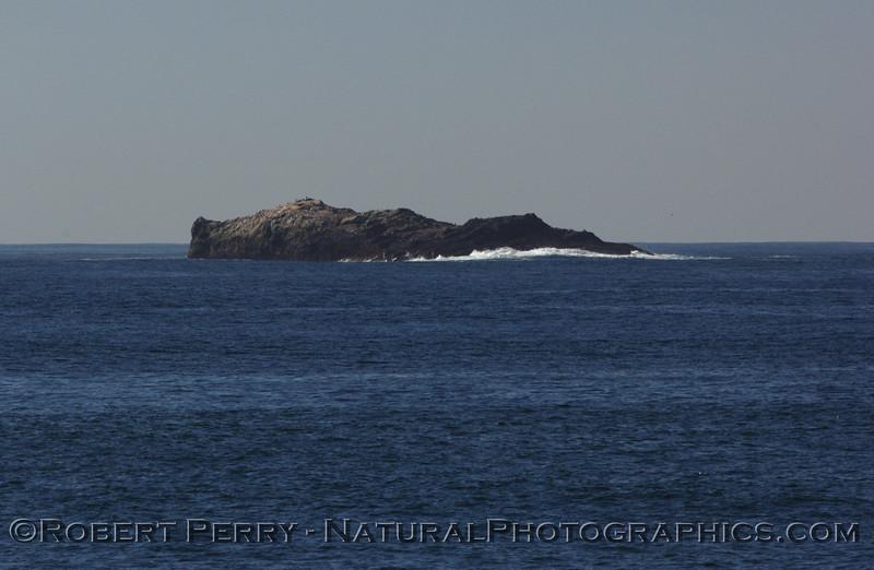Richardson Rock, San Miguel Island; image 3 of 3.