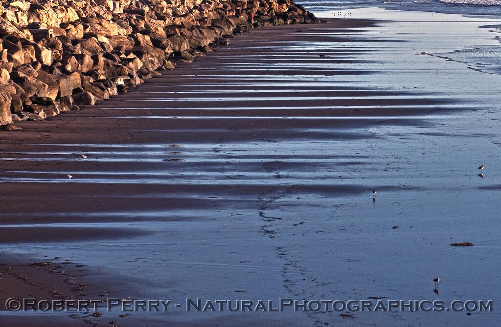 low tide wet sand drainage lines 2014 12-22 Mussel Shoals-a-010