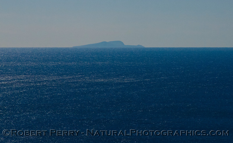 Santa Barbara Island as seen from atop Deer Creek.  It's about 30 miles offshore.
