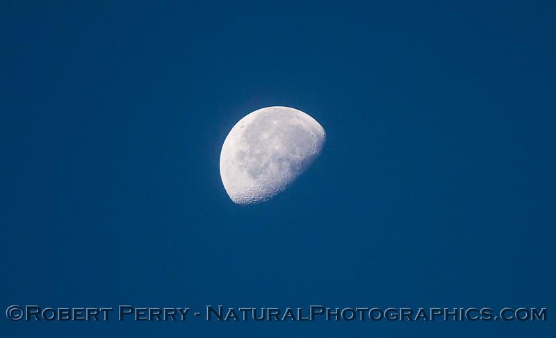 moon 2010 10-28 Zuma - 031