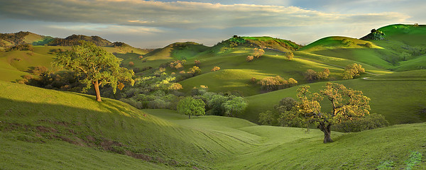 There are seemingly endless trails winding their way through the hills and valleys around Mt. Diablo. And sometimes as you hike, your view opens up to vistas like this where a bit of low light can make you stop in your tracks and take it all in. 2 images stitched together for an extra wide view.
