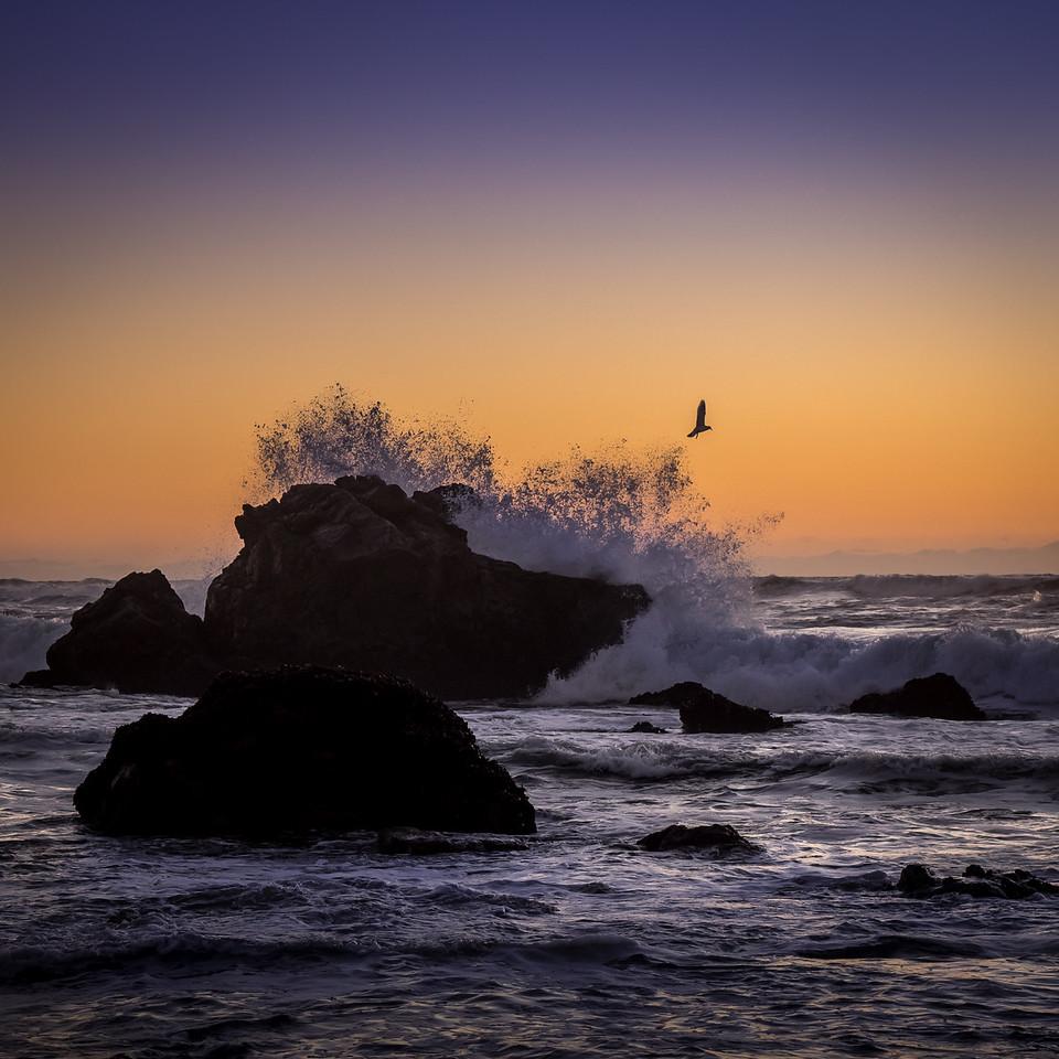 Sunset, near Bodega Bay