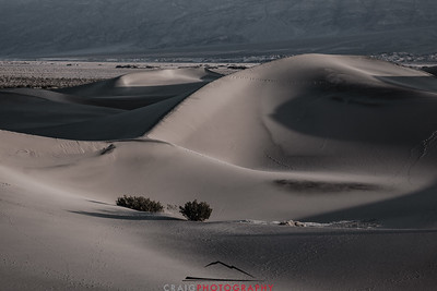 Stovepipe Dunes Death Valley National Park CA