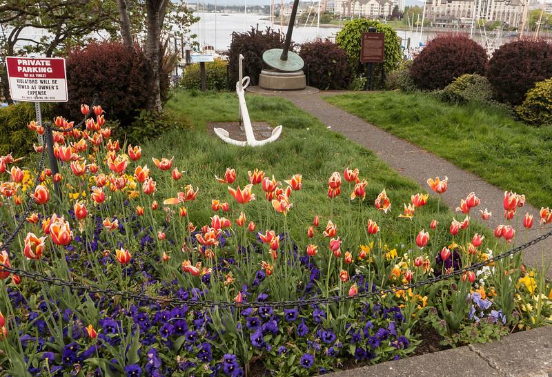 Colorful Victoria