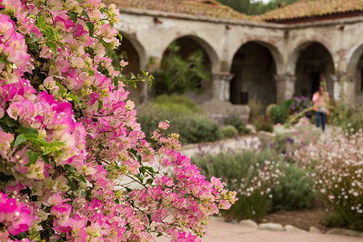 Throughout the Mission, you'll see gorgeous flowers that attract pretty little hummingbirds.