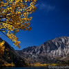 Convict Lake View