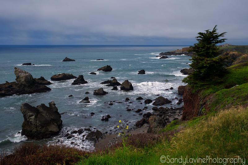 Sonoma Coast Ocean View 2