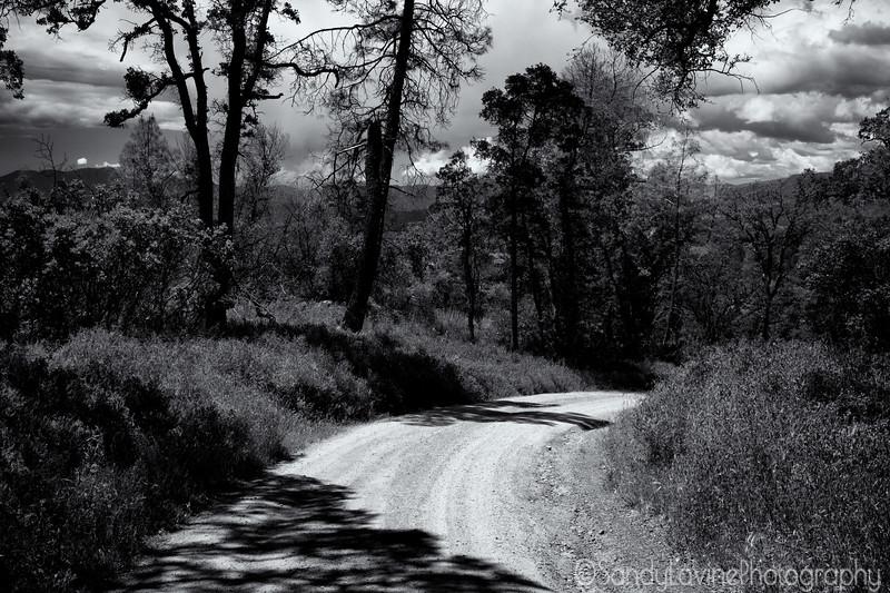 Lake County Road