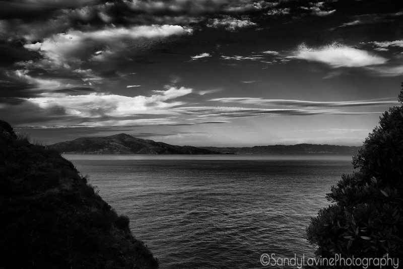 Angel Island From Point Cavallo