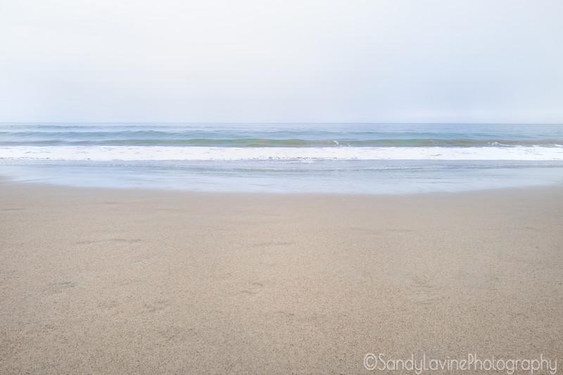 Limantour Beach Spring 2019 B